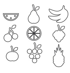 Fruits icons on white background vector image