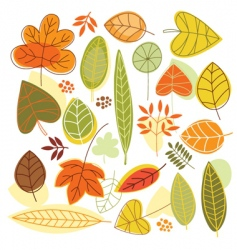 set autumnal leaves vector image vector image