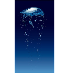 Bubbles in deep water vector image vector image