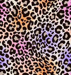 colorful animal print vector image vector image