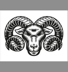 Aries zodiac sign vector