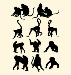Monkeys animal silhouette vector