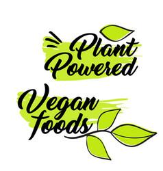 Organic and vegan logo labels vector