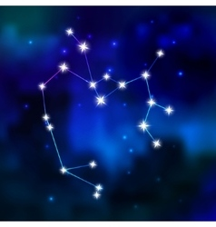 Zodiac constellation in sky vector