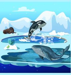 cartoon arctic fauna template vector image vector image