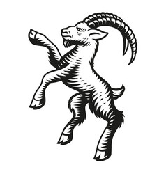 a goat vector image