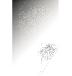 large spider web vector image
