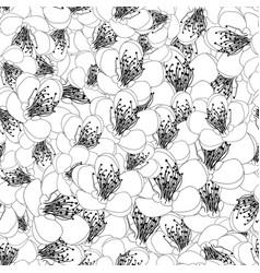 momo peach flower blossom outline seamless vector image