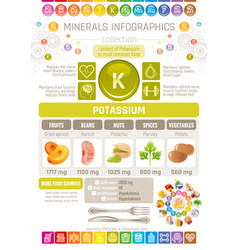 Pottasium mineral supplement rich food icons vector