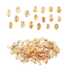 raw oat flakes photo realistic set vector image