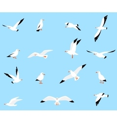 Set of beautiful seagulls vector