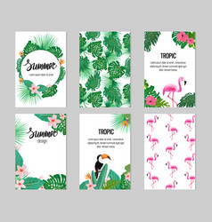 set six cards with tropic elements vector image