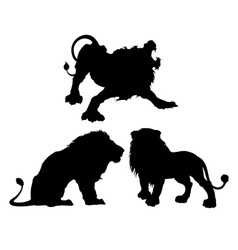 silhouettes lions in three different poses vector image