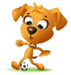 yellow fun dog play with soccer ball vector image