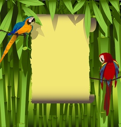 parrots on a branch of liana vector image