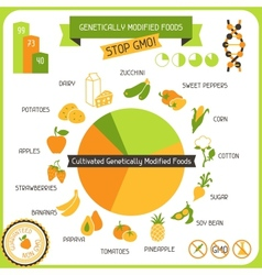 Information Poster Genetically Modified Foods vector image