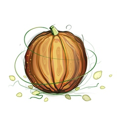 Pumpkin and Seeds vector image vector image