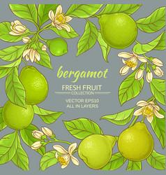 Bergamot frame vector