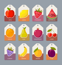 fruits tags fresh healthy food apples oranges vector image
