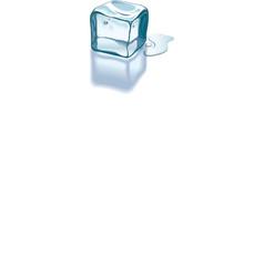 Ice cube melting vector
