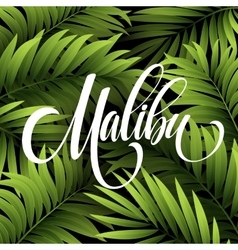 Malibu California handwriting lettering on the vector image
