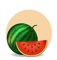 watermelon and slice on white background vector image