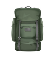 big travel backpack vector image