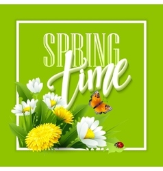 Inscription Spring Time on background with spring vector image