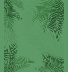 Beautiful palm leaf background vector