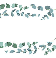eucalyptus border pattern on white background vector image