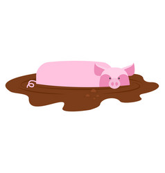 Pig in mud piggy dirty puddle farm animal piglet vector
