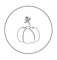 Pumpkin icon outline single plant icon from the vector