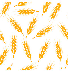 seamless wheat pattern background wheat vector image