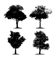 silhouette tree set on white background icon vector image
