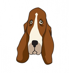 basset vector image vector image