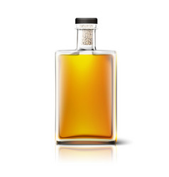 blank square whiskey bottle isolated on white vector image