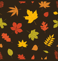 elegant seasonal seamless pattern with autumn vector image