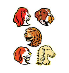 Hound dogs mascot collection vector