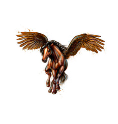 pegasus mythical winged horse from splash of vector image