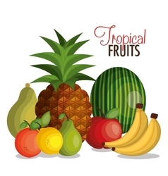set cartoon fruits tropicals design vector image