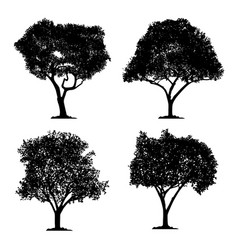 silhouette tree set on white background isolated vector image
