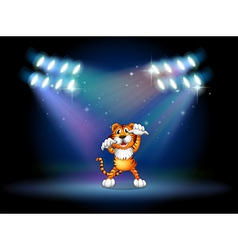 Tiger Center Stage vector image