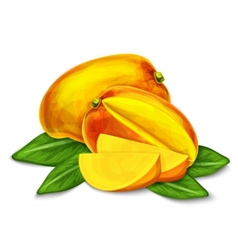 Mango isolated poster or emblem vector image