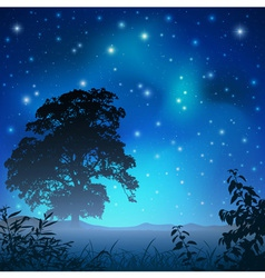 night sky with tree vector image vector image