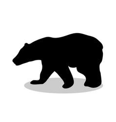 bear wild black silhouette animal vector image vector image