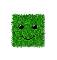 green grass square field 3d face smile smiley vector image