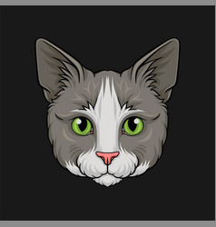 Head of grey cat face of pet animal hand drawn vector