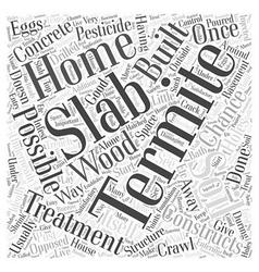 Termite Treatment Slab Word Cloud Concept vector image