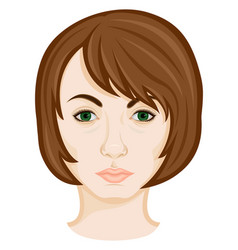 face of young woman vector image
