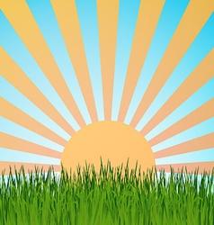 Grass background summerretrett vector image